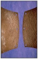 43- Violet et brun