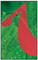 4- Vert et rouge