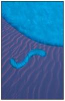 50- Bleu et violet